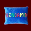 Boys Personalized Minky Pillow