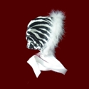 Click to Enlarge Picture - Zebra Minky Bonnet With Boa